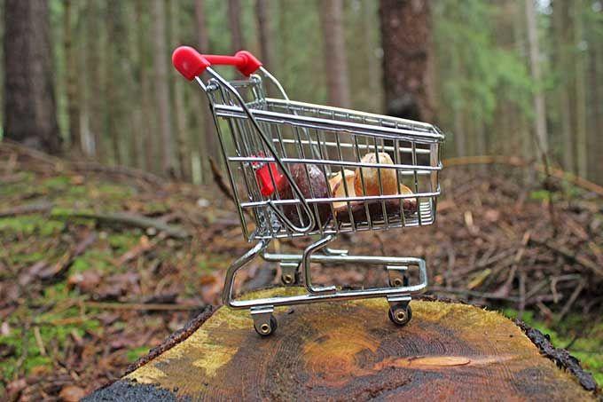Responsible purchasing - KEDGE